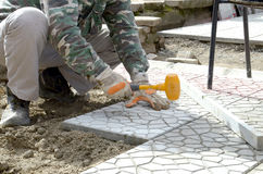 Hands of a builder laying new paving stones carefully placing on Stock Image