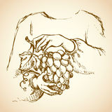 Hands with bunch of grapes. Vector drawing Royalty Free Stock Photo