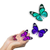 Hands with butterflies Royalty Free Stock Images