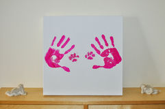 Hands on canvas. Hands and paws pet fuchsia on white canvas Stock Image