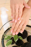 Hands care Royalty Free Stock Photos