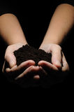 Hands carrying Soil Stock Image