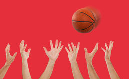 Hands catching a basketball Royalty Free Stock Image