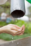 Hands catching clean falling water close up Royalty Free Stock Photos