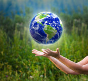 Hands catching globe Stock Photography