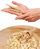 Hands with cereal and flakes Stock Image