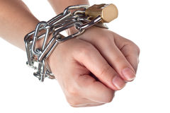 Hands in chain. Two hands securely tied by metal chain isolated on white background Stock Photography