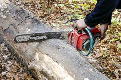 Hands with chainsaw Royalty Free Stock Photo