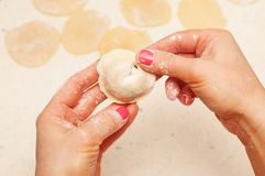 Hands of chef with dumplings Royalty Free Stock Photography
