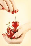 Hands cherry with red nails manicure Stock Photography