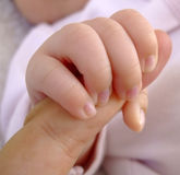 Hands child Royalty Free Stock Image