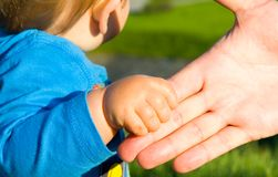 Hands of child son and father Stock Images
