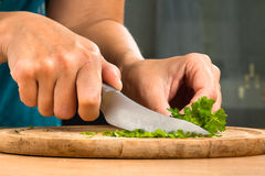 Hands chopping parsley leaves, closeup Stock Images