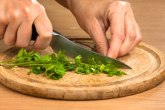 Hands chopping parsley leaves Royalty Free Stock Photography