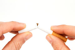 Hands with cigarette. Two hands breaking a cigarette in half in front of a white background Stock Photos