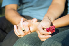 Hands Clasping a Red Flower Royalty Free Stock Photo