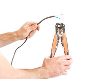 Hands cleans electrician wire pliers special tool. Isolated on w Royalty Free Stock Photography