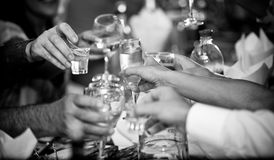 Hands clinking glasses with vodka at party. Black and white closeup photo of hands clinking glasses with vodka at party Royalty Free Stock Image
