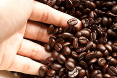 Hands with coffee beans Royalty Free Stock Images