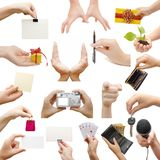 Hands collage, isolated on white background Royalty Free Stock Photo