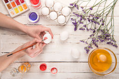 Hands coloring egg. Top view of female hands coloring egg on table for Easter Royalty Free Stock Images