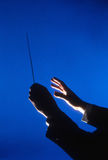 Hands of Conductor With Baton. Hands of an orchestra conductor holding a baton against a blue background. Vertical shot Royalty Free Stock Photography
