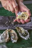 Hands of the cook opening an oyster on wooden Table stock photo