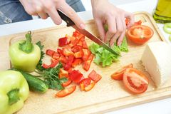 Hands  cooking vegetables salad Stock Image
