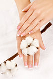 Hands with cotton crop Royalty Free Stock Images