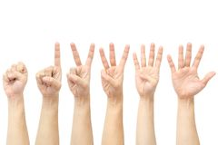 Hands counting Royalty Free Stock Photos