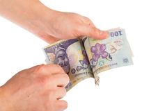 Hands counting money. Man hands counting romanian money lei Stock Photo