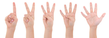 Hands counting from one to five isolated on white background Stock Image