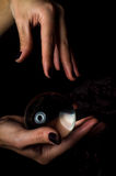 Hands Crystal Ball Royalty Free Stock Photo