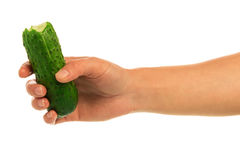 Hands with cucumber Stock Images