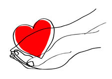 Hands cupped holding a red heart. line illustration Stock Images
