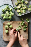 Hands cutting brussels sprouts on a board Stock Photography