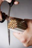 Hands Cutting Bundle Of Cigarettes. Closeup of hands cutting bundle of cigarettes against gray background Stock Photos