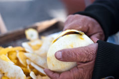 Hands cutting a citron Stock Photos