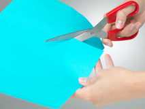 Hands cutting a paper with scissors. Hands cutting a shape from a blue paper with a pair  of red scissors on neutral grey background Royalty Free Stock Image