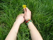 Hands with dandelion Royalty Free Stock Images