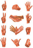 Hands Design Collection. Hands in 12 positions Stock Photography