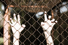 Hands in desperate grip onto prison fence. Bleached filtered image of Hands in desperate grip on mesh wired fence, symbolising captivity, hopeless, kidnapping Royalty Free Stock Photo