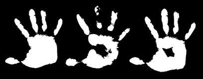 Hands Stock Image