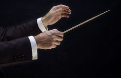 Hands of the director. Hands of the conductor, on black background royalty free stock photo