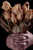 Hands dirty and dried roses Royalty Free Stock Photos