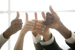 Hands of diverse business team showing thumbs up, closeup view. Hands of diverse business team people showing thumbs up like finger gesture as concept of Stock Photos