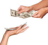 Hands with dollars. Hands holding money dollars isolated on white background stock image
