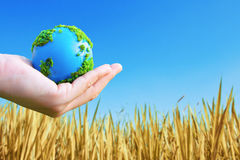 Hands and Earth. Concept Save green planet Royalty Free Stock Photo
