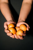 Hands with eggs Royalty Free Stock Image