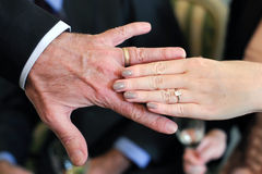 Hands of elderly bride and groom. Royalty Free Stock Image